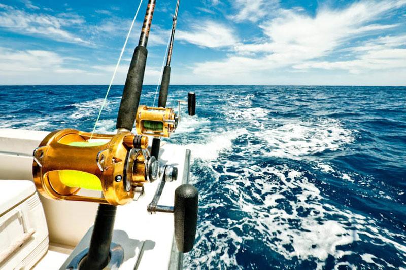 Experienced southwest florida fishing guides sarasota for Sarasota deep sea fishing charters